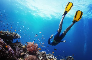Love Snorkeling? Try Scuba Diving