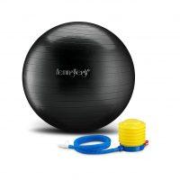 Hemmingway-Exercise-Ball