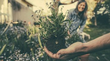 The-Health-Benefits-of-Gardening