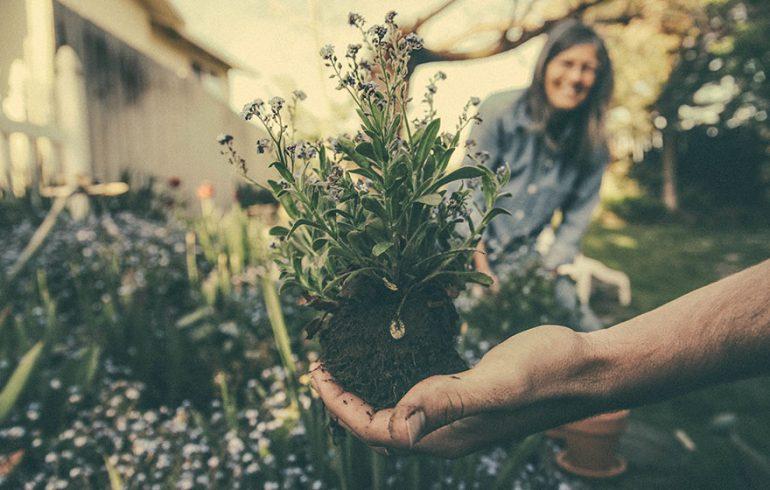 The-Health-Benefits-of-Gardening