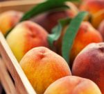 Why Peaches Pack a Nutritional Punch