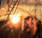 4 Ways to Ease Sundowner Syndrome Symptoms