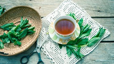 Stiff, Painful Joints? Steep Yourself a Cup of Spearmint Tea