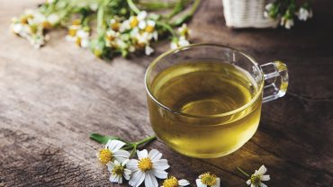 Chamomile Tea Benefits for Older Adults
