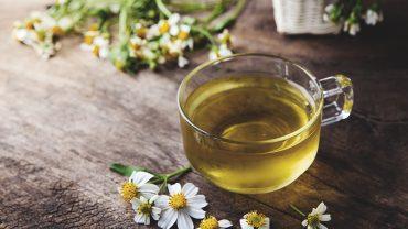 Chamomile Tea Benefits for Older Adults