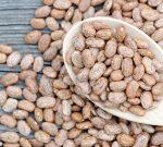 Pinto Bean Benefits