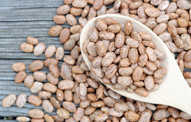 Pinto Bean Benefits