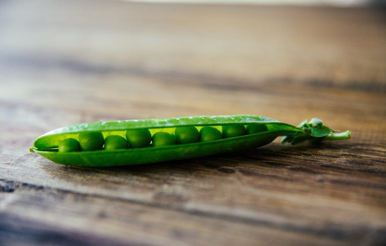 Legumes, Like Peas, Have Beneficial Effects on Blood Sugar Control
